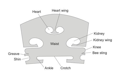 Violin-Bridge-Detailed-Description.jpg