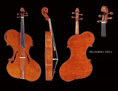 Pellegrina-viola.jpg
