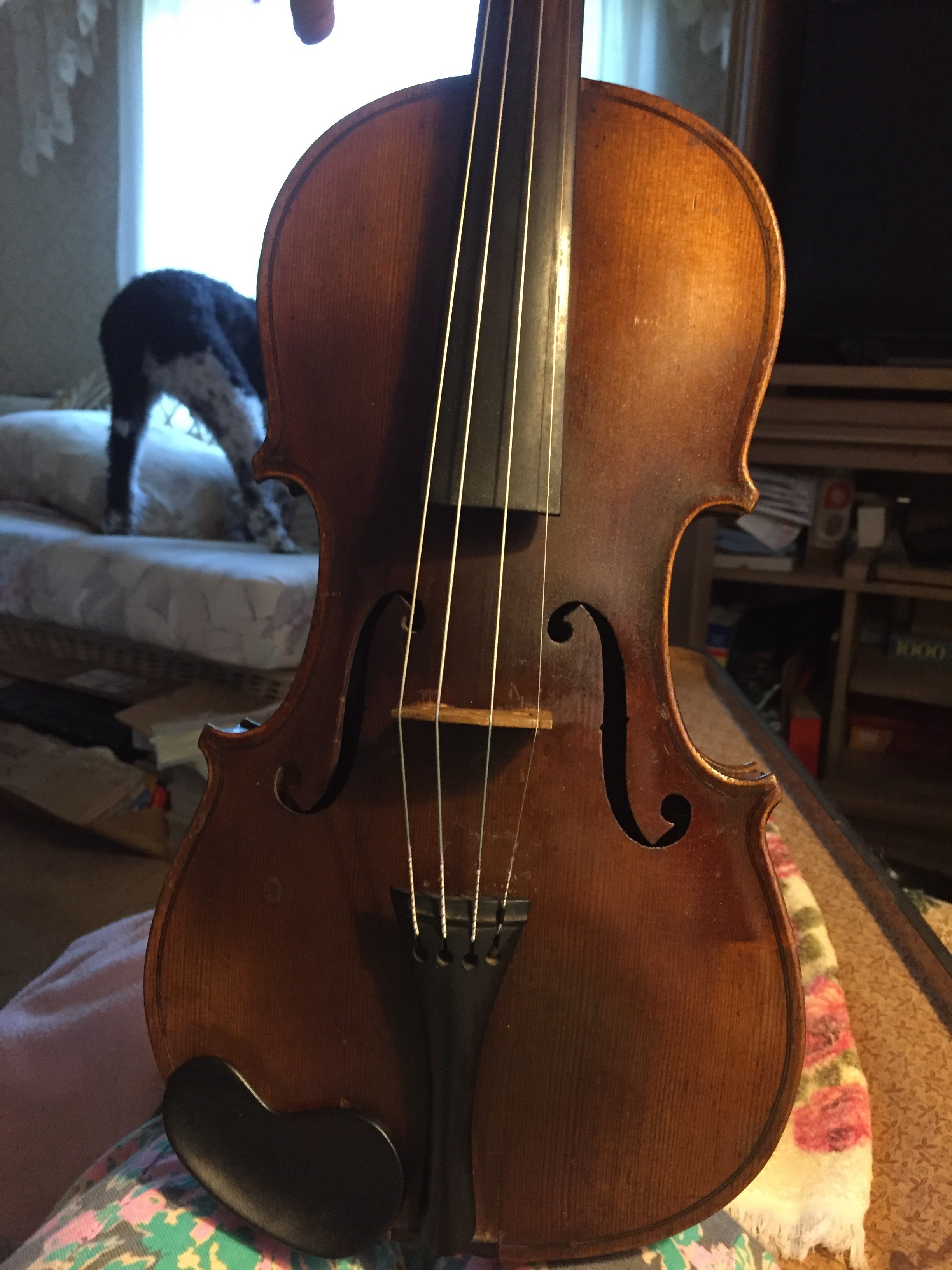 Learn violin fiddlerman