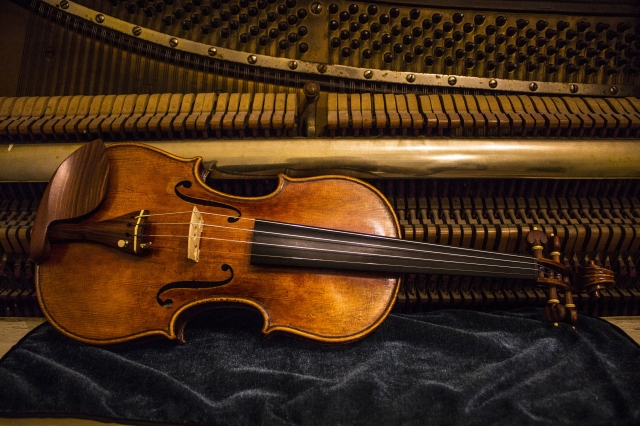 web-Disen-Violin1.jpg