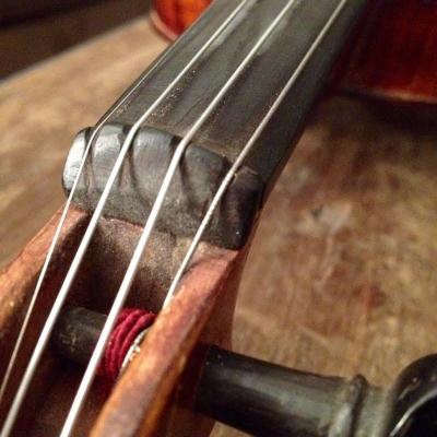 fiddle4.jpg