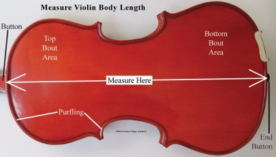 measure_violin_body_length.jpg