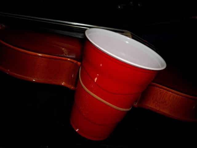 Violin_Cup-bout.JPG