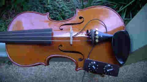 violin-top.jpg