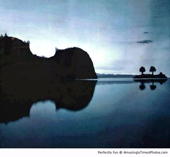 Violin-Landscape.JPG
