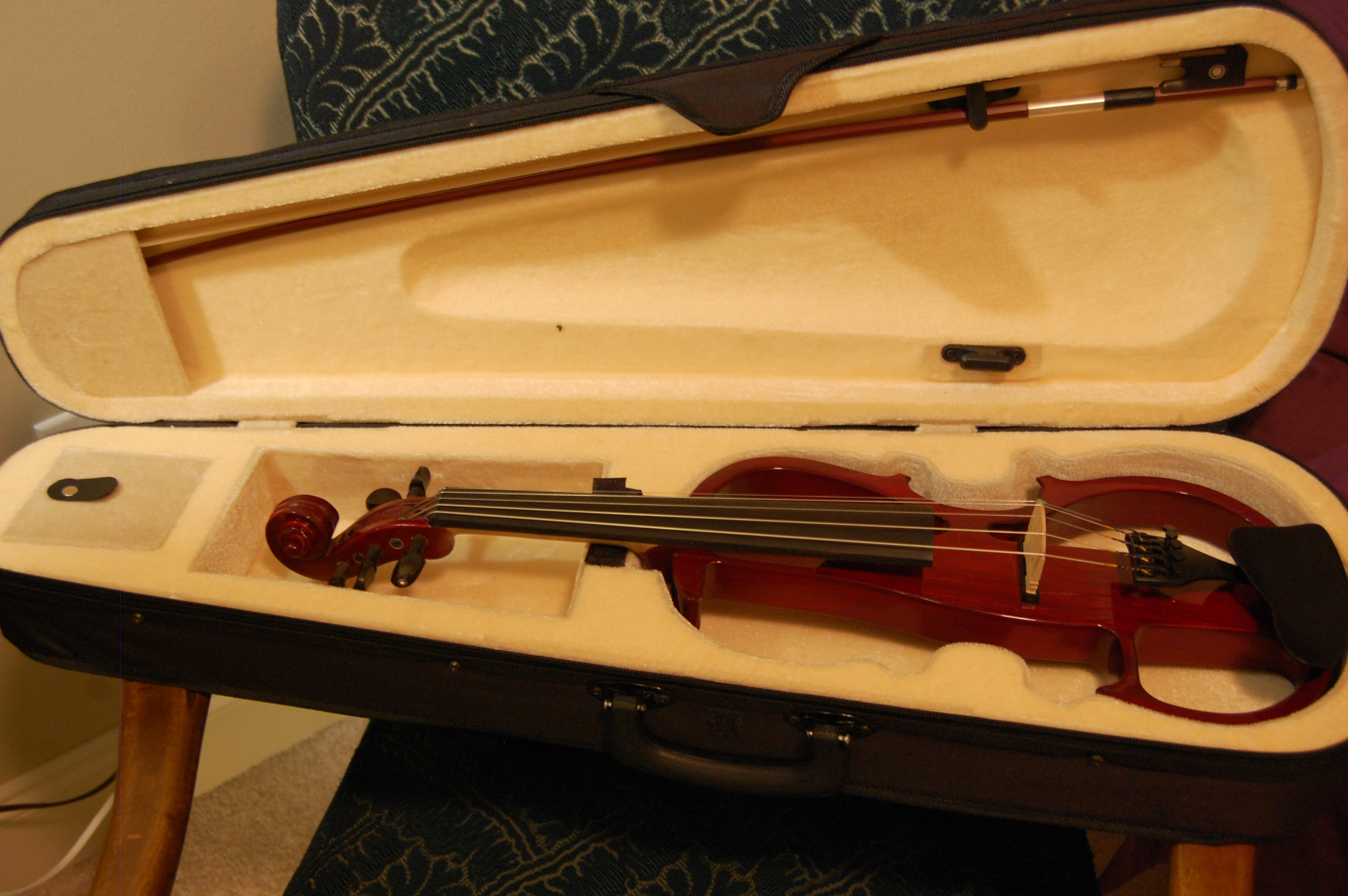 Violin-case-and-bow.JPG