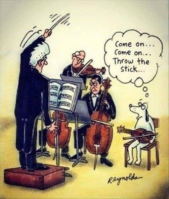 Conductor-Dog.jpg