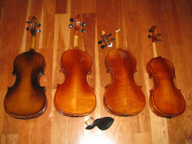 4-violins-bottom.jpg