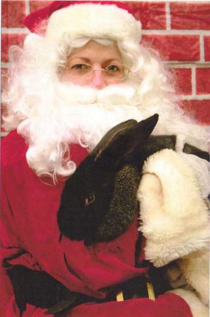 Christmas-Aslan.jpg