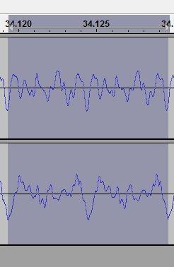 ferret-wave.JPG