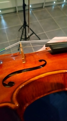 violin...jpg