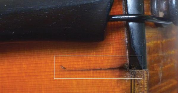 Saddle-Crack-Example-2.jpg