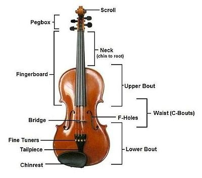 400px-Violinconsruction3.JPG