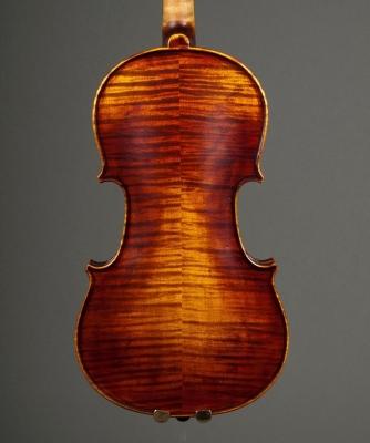 horse-violin-back.jpg