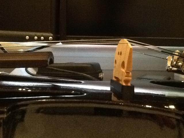 Strings-at-end-of-Fingerboard-Side.JPG