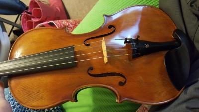 Artist-viola-13.jpg