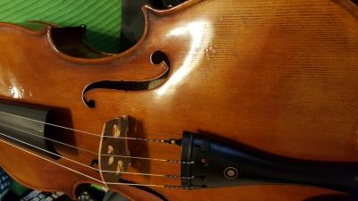 Artist-viola-2.jpg