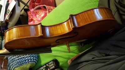 Artist-viola-4.jpg