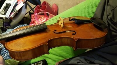 Artist-viola-5.jpg