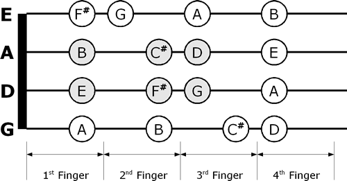http://fiddlerman.com/wp-content/forum-image-uploads/uzi/2014/05/D-Major-violin-fingering-chart.png