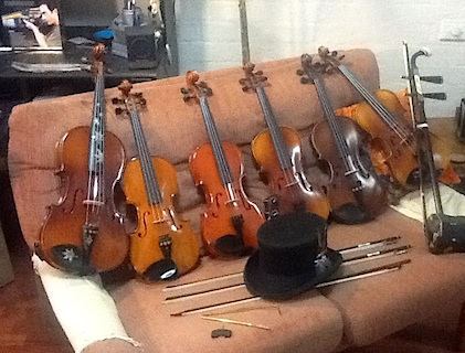 Ferrets Violin Collection